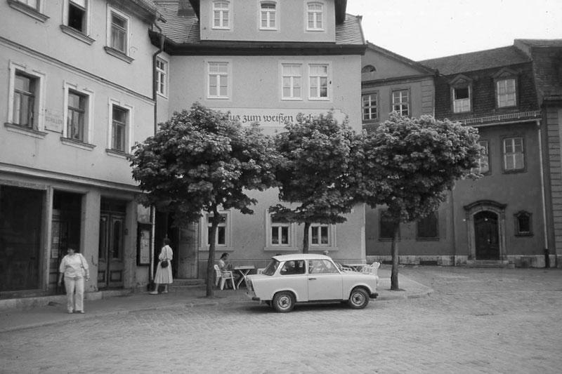 Frauenplan, WeißerSchwan, 2011-05-11